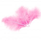 Перья, Розовый, 10*15 см, 30 шт.