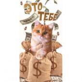 Конверты для денег, Это Тебе (кот с долларами), 10 шт.