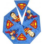 Гирлянда Флажки, Супермен, 200 см, 1 шт.